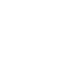 The Lettering Supply Co. Logo